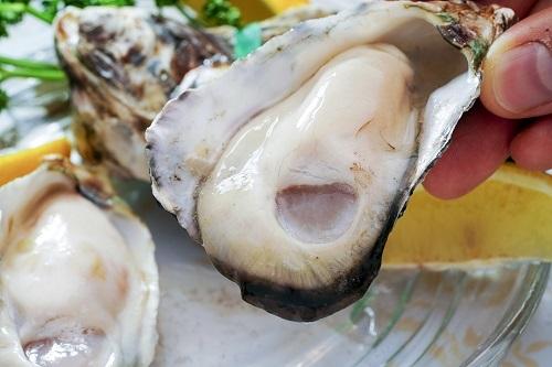 殻付き牡蠣 生食用の商品画像