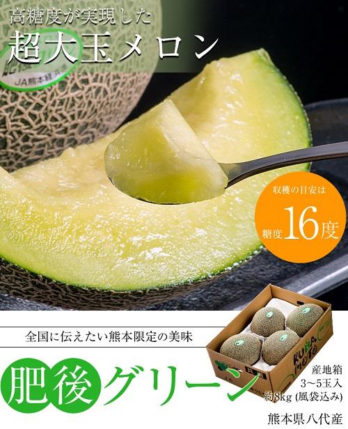 熊本県産メロン 肥後グリーンの商品画像